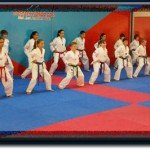 taekwondo sydney , taekwondo australia