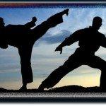 sydney martial arts